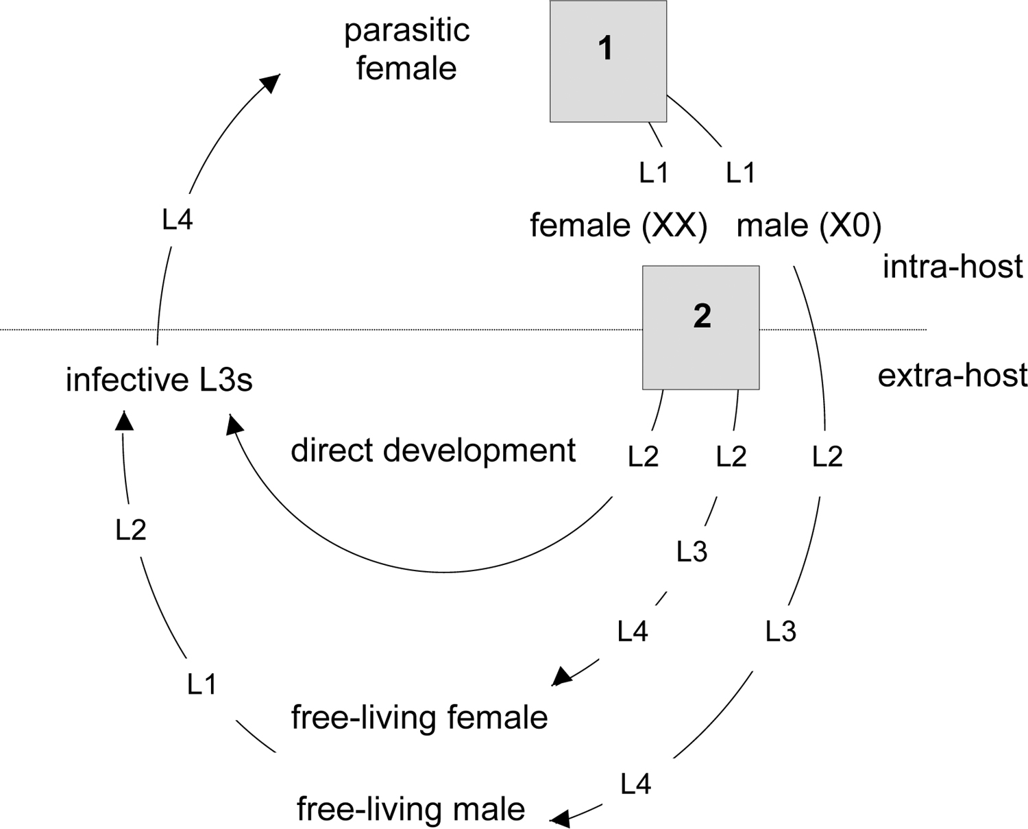 Living together parasites and sex